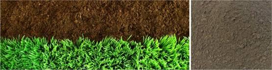 雷竞技raybet平台雷竞技raybet平台生物科技有限公司,益阳大型综合性肥料生产企业