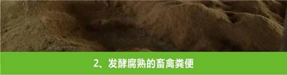 益阳市yaboapp生物科技有限公司,益阳大型综合性肥料生产企业